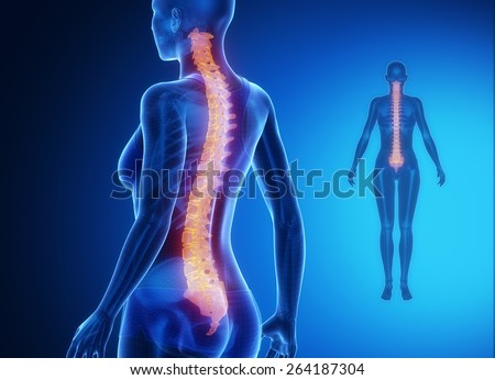 SPINE blue x--ray bone scan - stock photo
