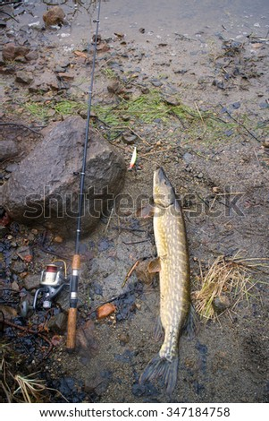 spinning lure pike river luck - stock photo