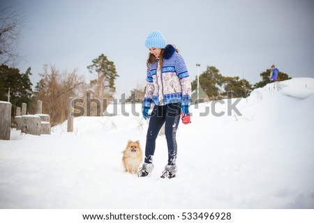 Spitz breed dog playing with a woman walking outdoors winter day. taking care of a pet, dog walking