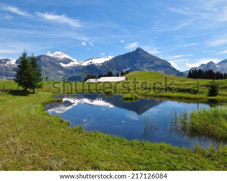 Spitzhorn and pond, summer scene in the Bernese Oberland - stock photo