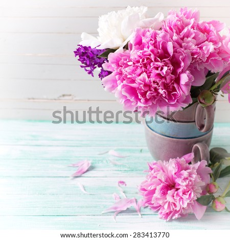 Splendid  pink  peonies flowers in vase  on turquoise painted wooden planks against white wall. Selective focus. Place for text. Square image.
