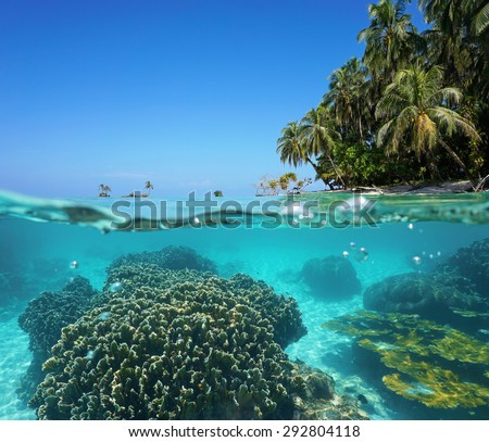 Split image over and under sea surface with coconut trees on tropical shore above waterline and corals underwater, Caribbean sea - stock photo