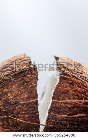 Split into two parts coconut - stock photo