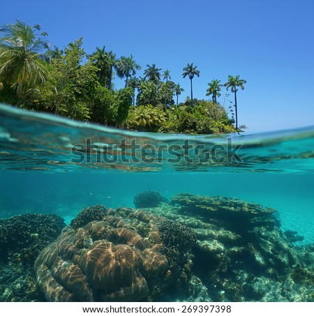 Split shot of a lush tropical island above water surface and coral reef underwater, Caribbean sea, Bocas del Toro, Pana - stock photo