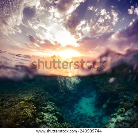Split shot of the coral reef underwater and bright clouds in the sky during sunset - stock photo