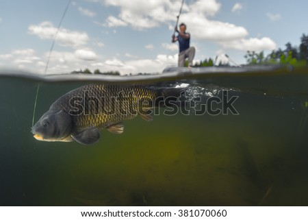 Split shot of the man fishing on the lake with underwater view of the fish. Focus on the fish only - stock photo
