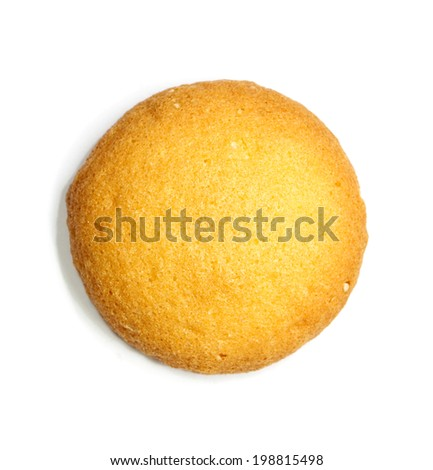 sponge biscuit on white background - stock photo