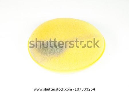 Sponge paint Yellow on a white background