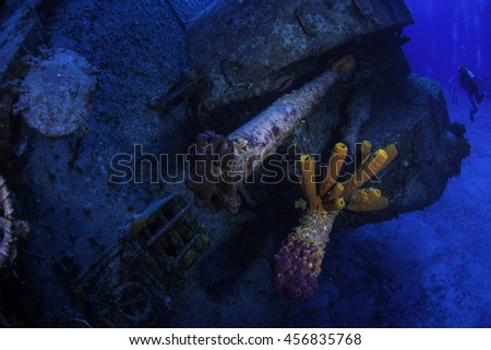 Sponges growing out of the bow guns on the M.V. Tibbests - stock photo