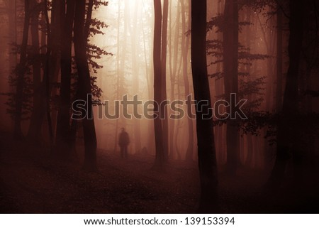spooky dark forest with creepy man - stock photo