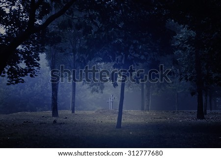 Spooky dark park with grave and granite crosses - stock photo