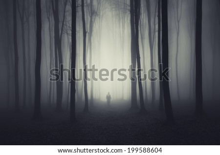 spooky forest scene with ghost on a path - stock photo