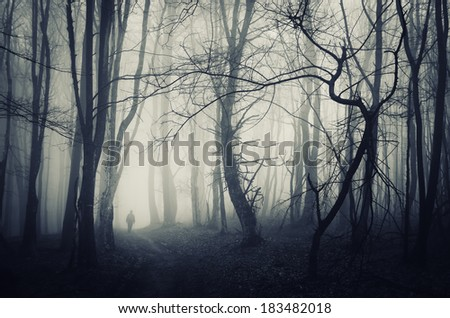 spooky forest scene with man walking on a dark path - stock photo