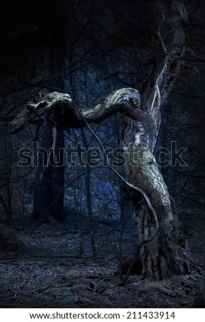 Spooky old tree in blue scary forest - stock photo