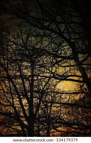 Spooky trees silhouettes. Vintage background