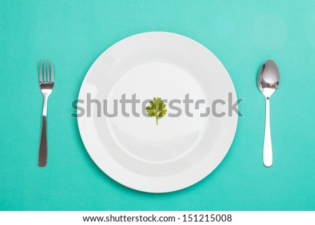 spoon fork and dish decorated with fennel - stock photo