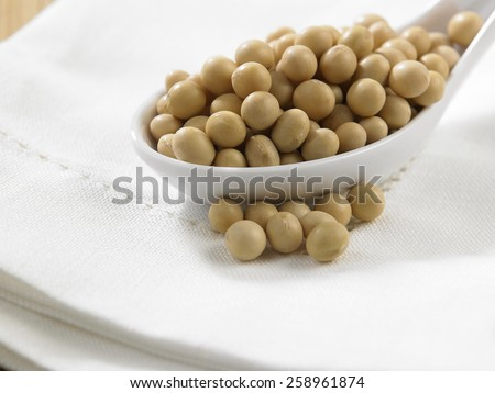 spoon full of the soy beans - stock photo