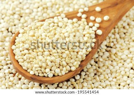 Spoonful of quinoa seeds closeup - stock photo