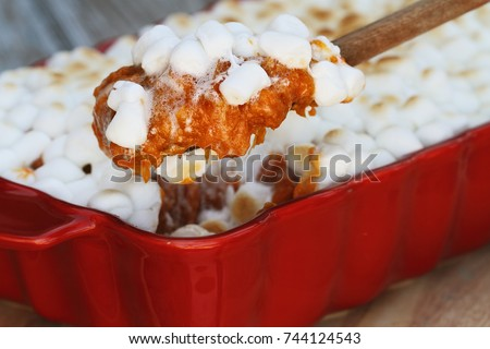 Spoonful of sweet potato casserole baked with mini marshmallows being served for Thanksgiving Day dinner. Extreme shallow depth of field with selective focus on spoon of potatoes.