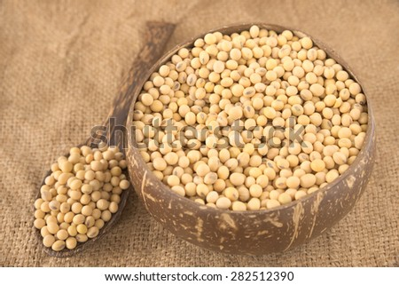 Spoonful of yellow bean and a bowl filled with full size yellow beans over agriculture sack background