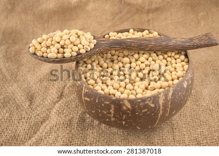 Spoonful of yellow bean on a bowl filled with full size yellow beans over agriculture sack background
