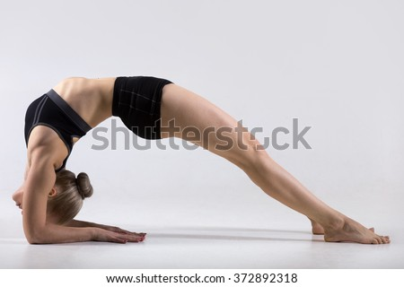 Sporty beautiful young woman practicing yoga, doing variation of Bridge Pose on elbows, Two-Legged Inverted Staff yoga Pose, Dvi Pada Viparita Dandasana, working out wearing black sportswear, studio - stock photo