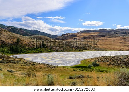 Spotted lake Osoyoos British Columbia - stock photo