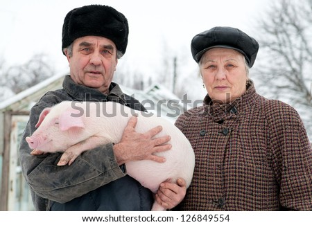 Spouses of retired farmers engaged in growing pigs. - stock photo
