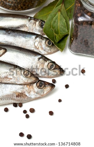 sprat fish in isolated on white background - stock photo