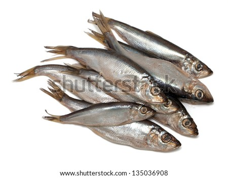 sprat fish isolated on white background - stock photo