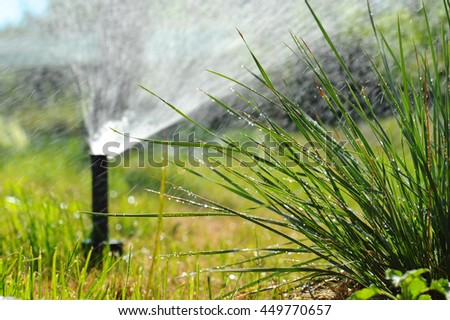 Spray the lawn and lush grass in drops of dew.