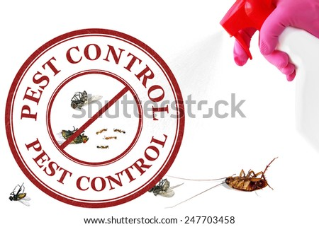 Sprayer with insecticide,pest insects and pest control stamp isolated on white background. Pest control concept  - stock photo
