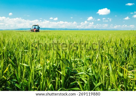 Spraying wheat crops field - stock photo