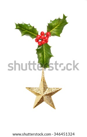 Sprig of holly with a gold glitter Christmas star isolated against white - stock photo