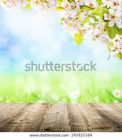 Spring abstract background with wooden planks and blurry background - stock photo