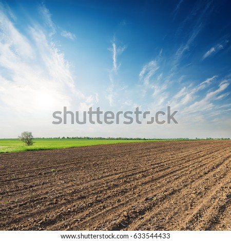 spring agricultural field and sunset over it in blue sky