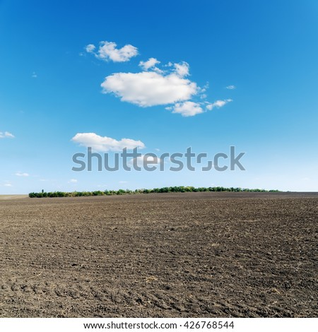 spring agriculture black field and blue sky
