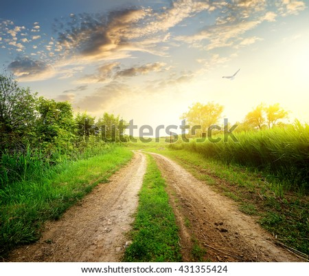 Spring and country road - stock photo