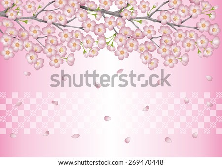 Spring. Background illustration of cherry blossoms. / Japanese cherry blossom viewing events. Pink. Cherry blossom viewing. - stock photo