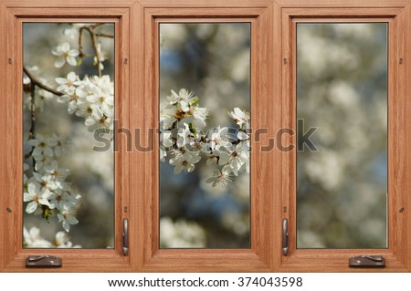 Spring behind the window - blooming tree