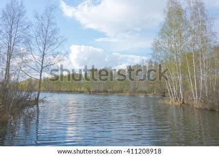 spring birch forest and lake - stock photo