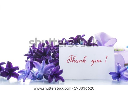 Spring blooming hyacinth with gratitude card on a white background - stock photo