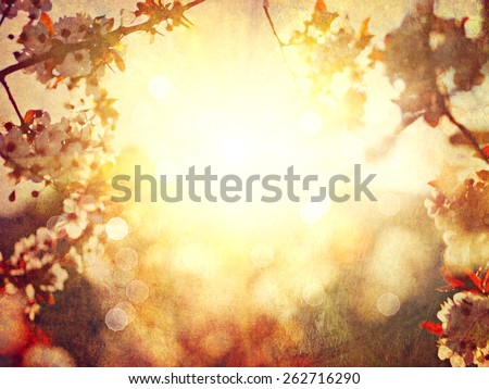 Spring blossom abstract blurred background. Beautiful nature scene with blooming tree and sun flare. Vintage styled, sepia toned, textured. Sunny day. Spring flowers. Orchard. Springtime - stock photo