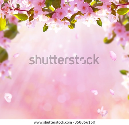 spring blossom background - stock photo