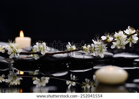 Spring blossom with white candle on black stones - stock photo