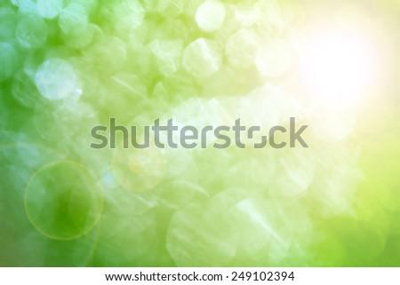 spring bokeh background - stock photo