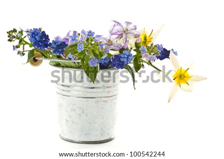 spring bouquet in a bucket on a white background - stock photo