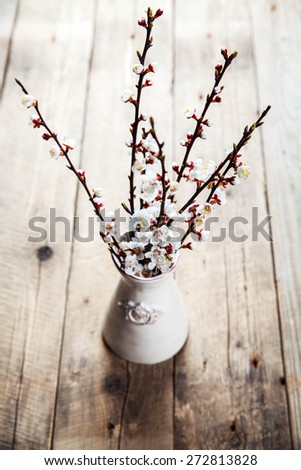 spring bouquet of blooming apricot. flowers - stock photo