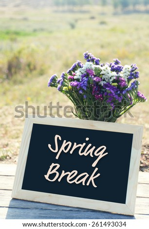 Spring break concept. Beautiful wild flowers in vase and frame on field background - stock photo