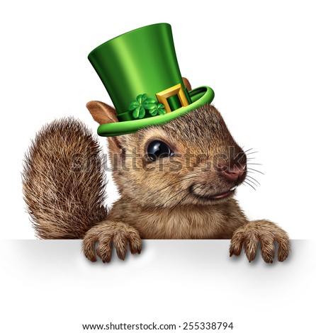 Spring celebration squirrel as cute happy wildlife wearing a green saint patricks day hat with four leaf clovers holding a blank sign as a festive holiday seasonal symbol. - stock photo